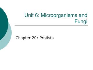 Unit 6: Microorganisms and Fungi