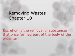 Removing Wastes  Chapter 10