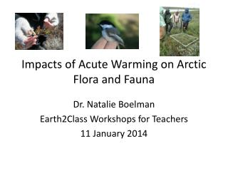 Impacts of Acute Warming on Arctic Flora and  Fauna