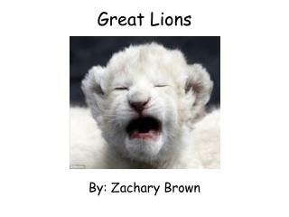 Great Lions