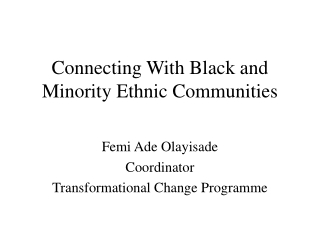 Black and Minority Ethnic Network project