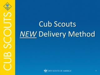 Cub Scouts  NEW  Delivery Method