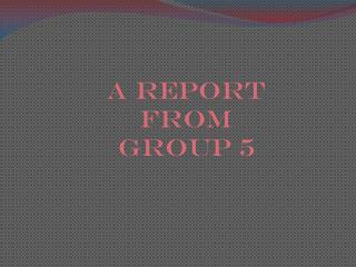 A report  from  group 5