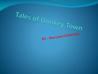 Tales of Donkey  T own