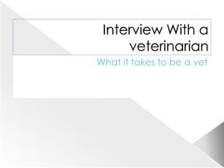 Interview With a veterinarian