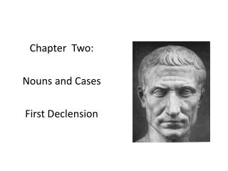 Chapter  Two: Nouns and Cases First Declension