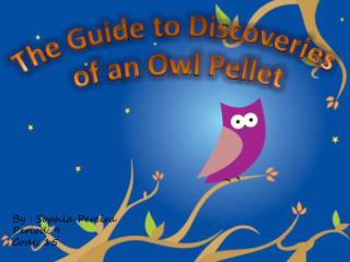 The Guide to Discoveries  of an Owl Pellet