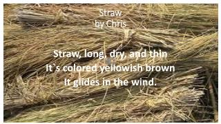 Straw  by Chris