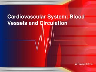 Cardiovascular System: Blood Vessels and Circulation