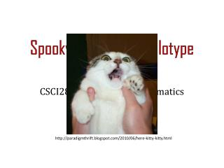Spooky  halloween  haplotype assembly