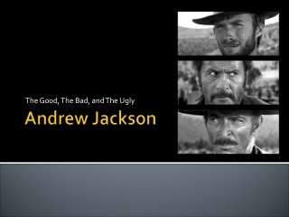 Jacksonian Politics