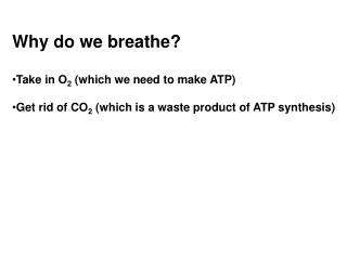 Why do we breathe? Take in O 2  (which we need to make ATP)