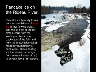 Pancake ice on the Rideau River: