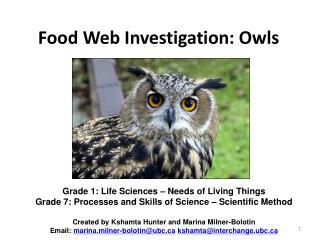 Food Web Investigation: Owls