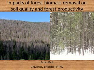 Impacts of forest biomass removal on  soil quality and forest productivity