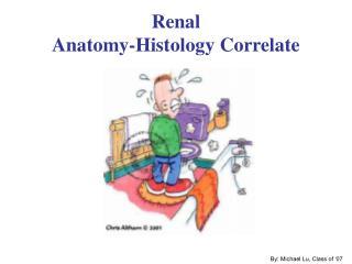 Renal Anatomy-Histology Correlate