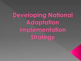 Developing National Adaptation  Implementation  Strategy
