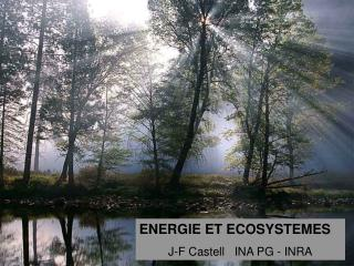 ENERGIE ET ECOSYSTEMES J-F Castell   INA PG - INRA