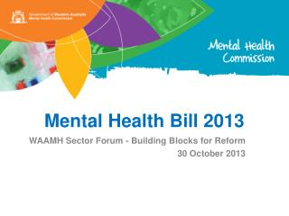 Mental Health Bill 2013
