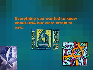 Everything you wanted to know about DNA but were afraid to ask.