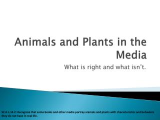 Animals and Plants in the Media
