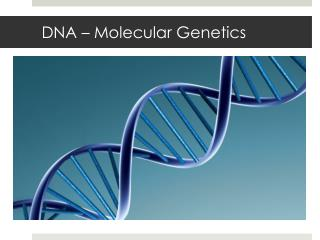 DNA – Molecular Genetics