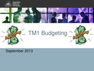 TM1 Budgeting