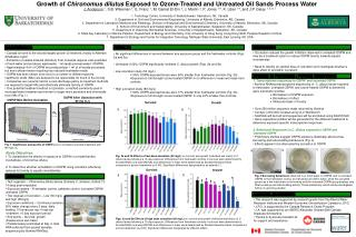 Growth of  Chironomus dilutus  Exposed to Ozone-Treated and Untreated Oil Sands Process Water