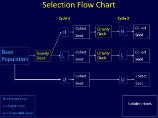 Selection Flow Chart