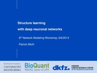 Structure  learning with deep neuronal networks