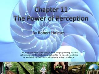 Chapter 11  The Power of Perception