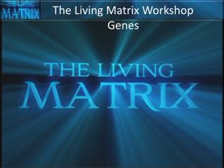 The Living Matrix Workshop Genes
