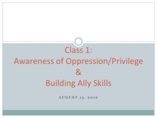 Class 1:  Awareness of Oppression/Privilege  &  Building Ally Skills
