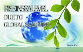 RIS E IN SEA LEVEL DUE  TO  GLOBAL WARMING