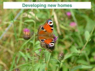 Developing new homes