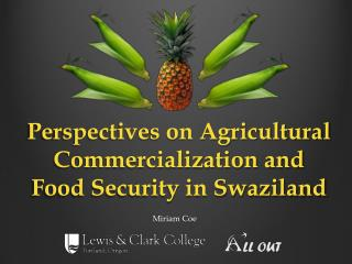 Perspectives on Agricultural Commercialization and Food Security in Swaziland