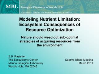 Modeling Nutrient Limitation: Ecosystem Consequences of Resource  Optimization