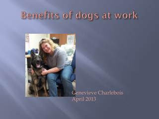 Benefits of dogs at work