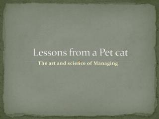 Lessons from a Pet cat