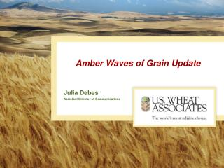 Amber Waves of Grain Update