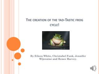 The creation of the tad-Tastic frog cycle!