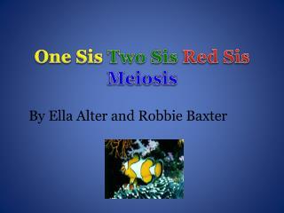 One Sis Two Sis Red Sis Meiosis