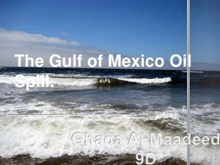 The Gulf of Mexico Oil Spill.