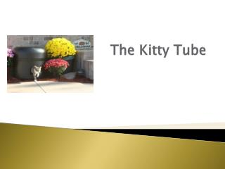 The Kitty Tube