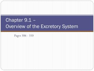 Chapter 9.1 –  Overview of the Excretory System