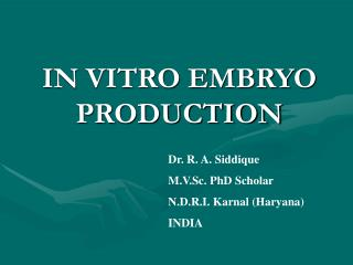 IN VITRO EMBRYO PRODUCTION