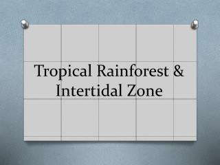 Tropical  Rainforest  & Intertidal  Zone