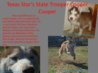 Texas Star's State Trooper Cooper Cooper