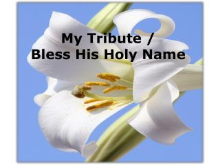 My Tribute /  Bless His Holy Name