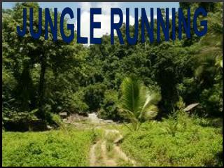 Jungle Running